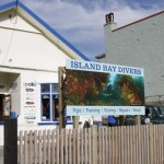 Welcome to Island Bay Divers
