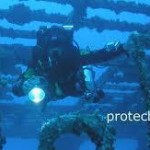 Dive HMNZS Canterbury and Poor Knights