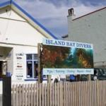 dive wellington scuba diving island bay