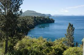 Taupo, Padi, SSI, Cmas, Naui, Dive Wellington, freedive, dive course, learn, openwater, snorkel